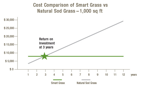 synthetic grass costs versus normal grass